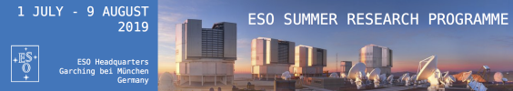 ESO Summer Research Programme