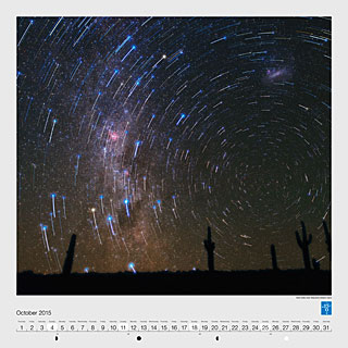 October – Star trails over Atacama Desert cacti
