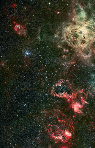 Tarantula Nebula 1 (Paranal Visitor Centre, International)