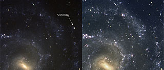 Spiral Galaxy NGC 7424 and SN2001ig