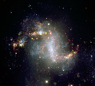 The Topsy-Turvy Galaxy NGC 1313*