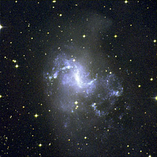 Larger Field around NGC 1313