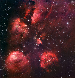 The Cat's Paw Nebula
