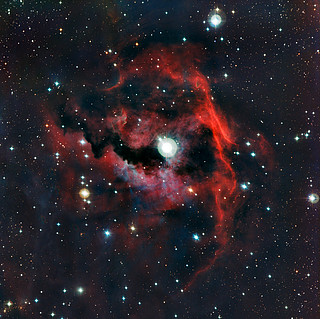 Close-up view of the head of the Seagull Nebula 		<!--