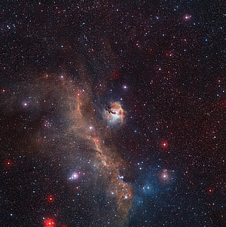 Wide-field view of the entire Seagull Nebula (IC 2177)