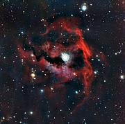 Acercándonos a la cabeza de la Nebulosa de La Gaviota