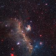 Visión de amplio campo de toda la Nebulosa de La Gaviota (IC 2177)