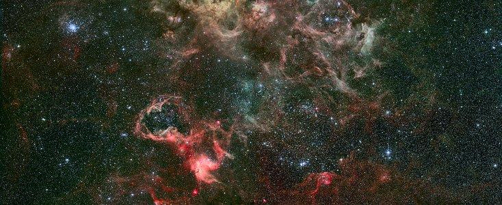 HEIC: Arachnophobes Beware: Hubble Close-up of Tarantula - Starship Asterisk*