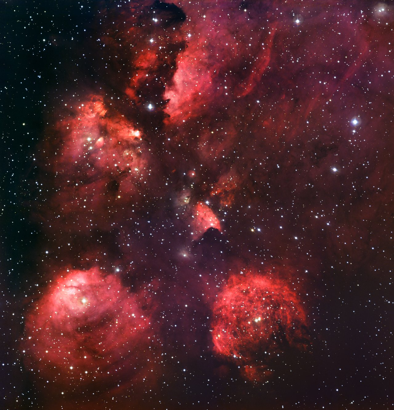 Best image ever of the Cats Paw Nebula; click image to enlarge