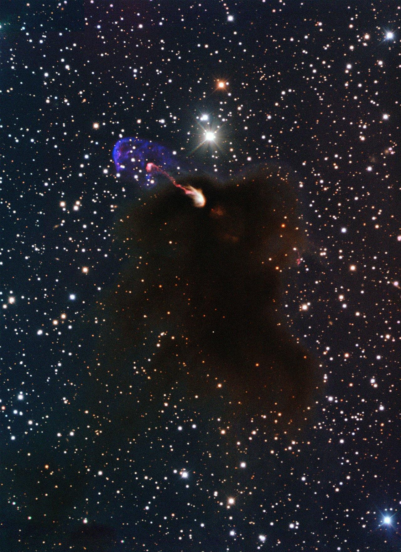 Les jets de gaz d'une étoile en gestation observés avec ALMA