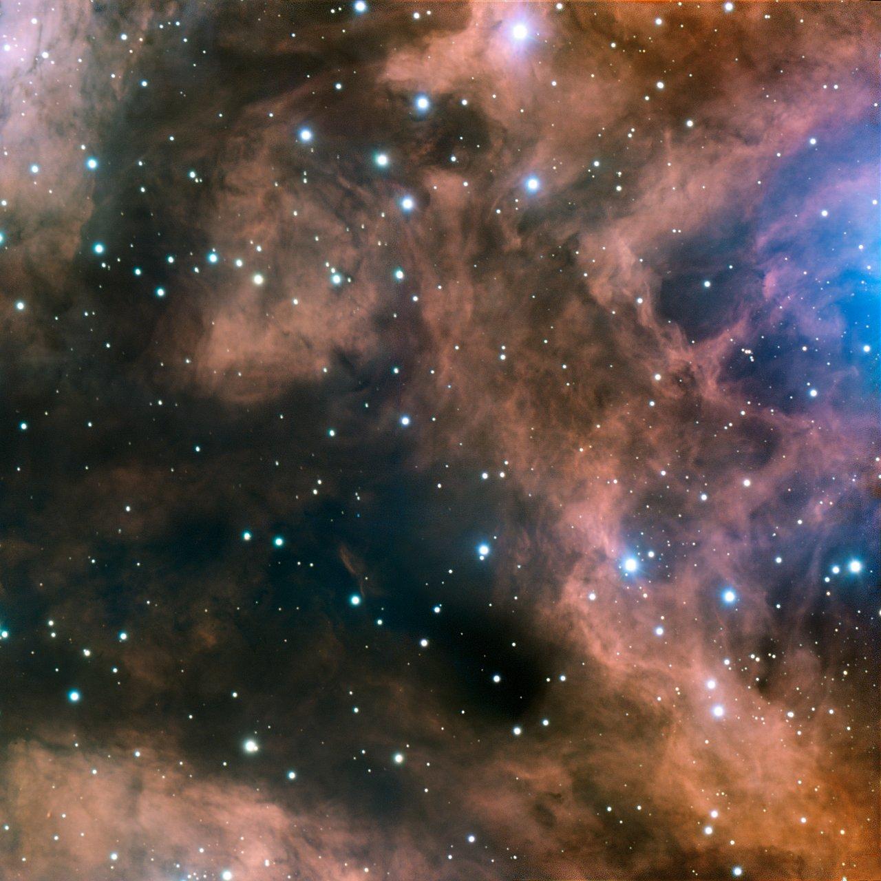 Joyas del Cosmos