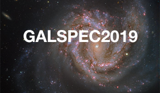 Extragalactic spectroscopic surveys: past present and future of galaxy evolution