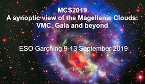 MCS2019: A synoptic view of the Magellanic Clouds: VMC, Gaia and beyond
