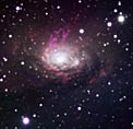 The Circinus Galaxy