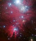 NGC 2264 und der Weihnachtsbaumhaufen