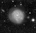 Spiral Galaxy in the Abell 496 Field