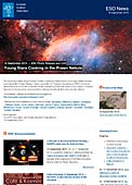 ESO Photo Release eso1340 - Young Stars Cooking in the Prawn Nebula