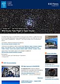 ESO Photo Release eso1430 - Wild Ducks Take Flight in Open Cluster