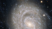 A close look at the spiral galaxy NGC 1637
