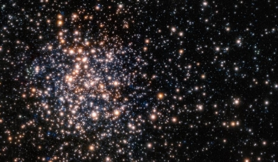 The unusual cluster Terzan 5